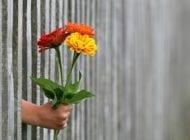 Wdzięczność, czyli sztuka doceniania codzienności
